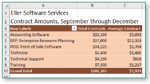 Completed PivotTable