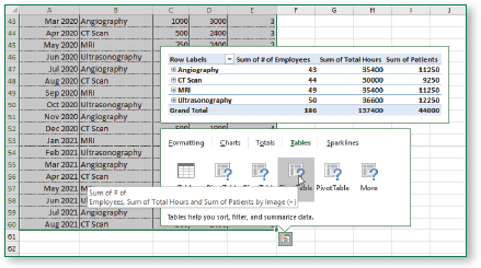 The preview shows the sum of # of employees, sum of total hours, and sum of patients by image